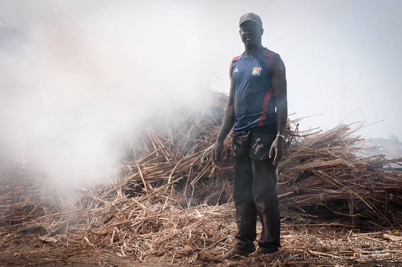 ©pedro loustau, sénégal, afrique, paysage, landscape, worker