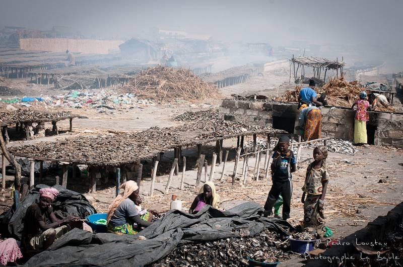 ©pedro loustau, sénégal, afrique, paysage, landscape, workers