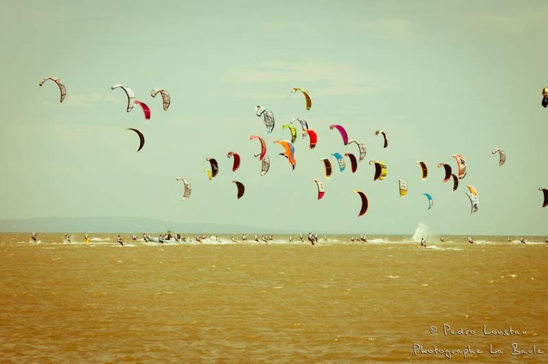 Dépard de la race-photographe la baule- photographe nantes- Leucate-mondial du vent-kitesurf