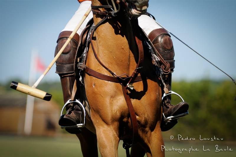 couverture Brittany Polo Club - pedro loustau photographe la baule nantes