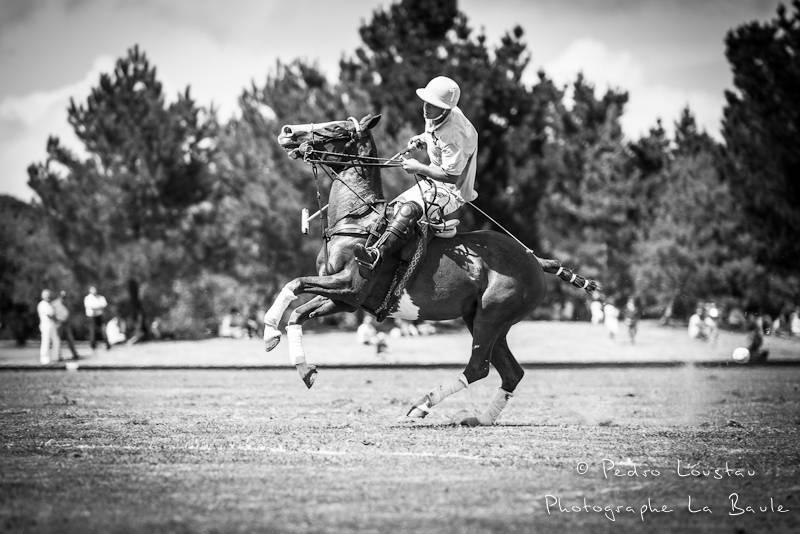cabré le petit cheval!-photographe la baule nantes guérande ©pedro loustau 2012