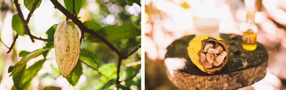 cacao - photographe la baule - © Pedro Loustau 2014 - www.photographelabaule.com
