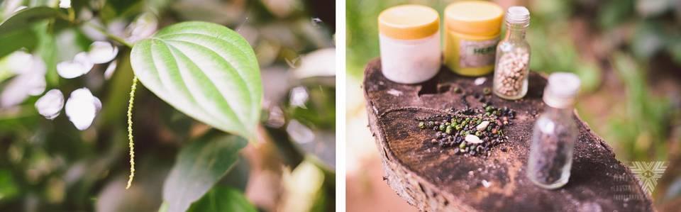 pepper - photographe la baule - © Pedro Loustau 2014 - www.photographelabaule.com