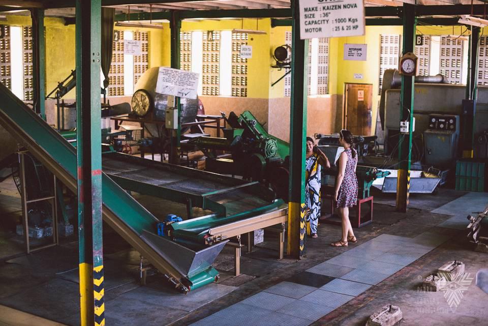 fabrique de thé - © Pedro Loustau 2014 - photographe la baule - www.photographelabaule.com